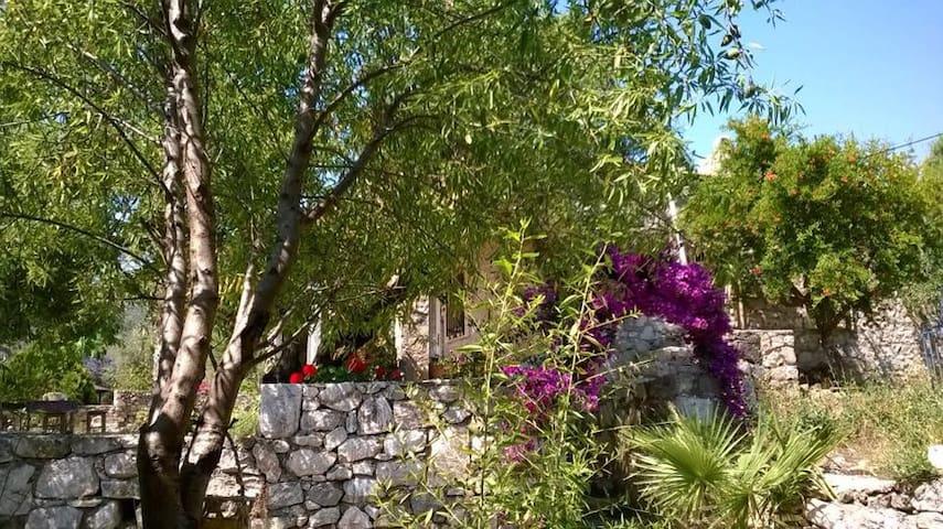 Stone House with orchard- Old Datca - Datça - Casa