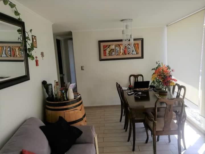 Cozy, confortable and super illuminated apartment