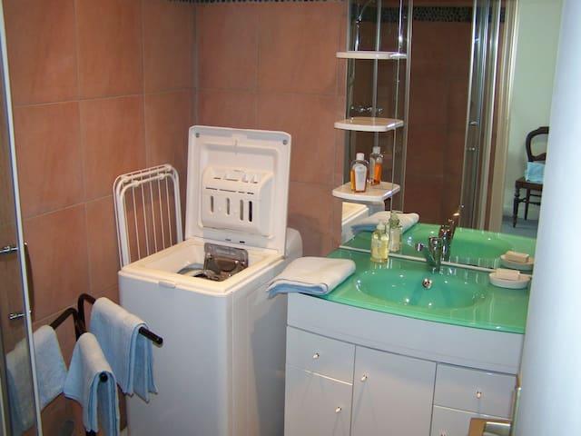 Salle d'eau avec douche, lave linge