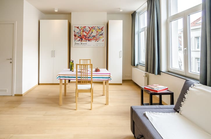 Bright apartment, bustling district - Ixelles