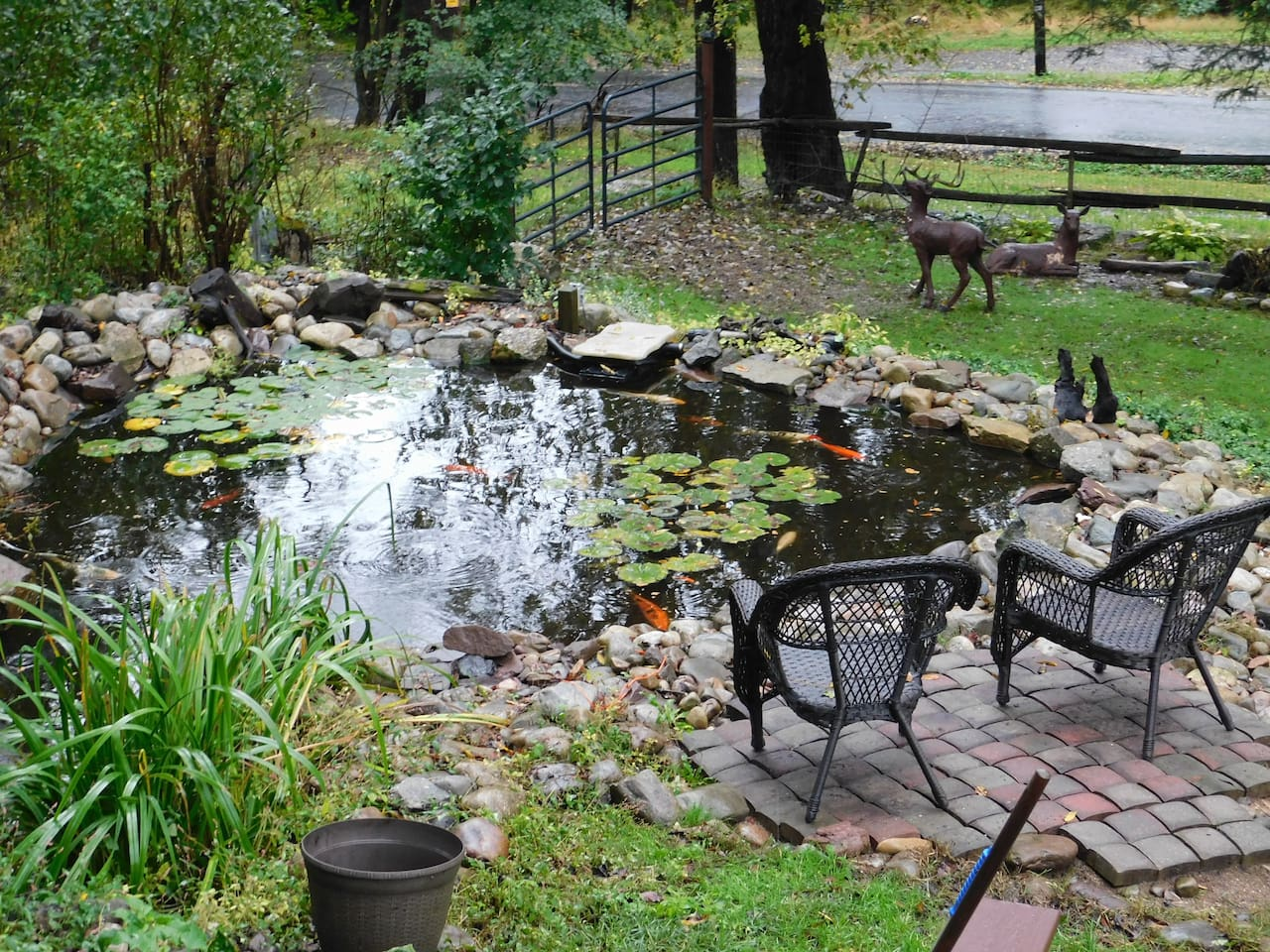 Relax by the Koi  pond and feed the fish!
