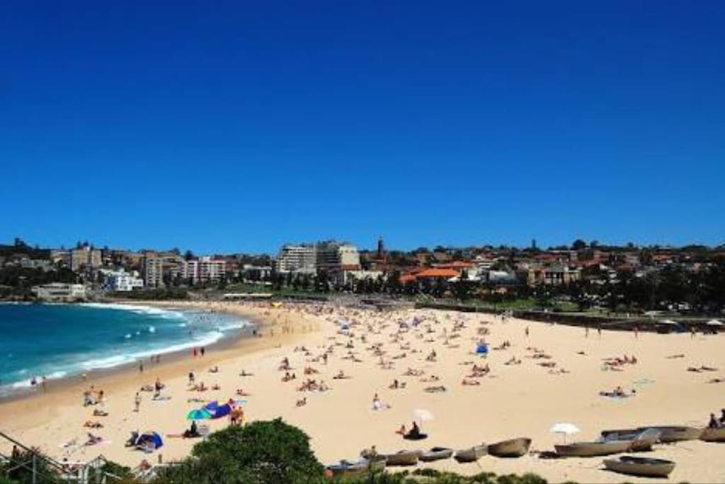 Glorious Coogee Beach! Essential Sydney summer lifestyle. Only 7 mins drive or 15 mins by bus. Bus stop 200m from your door! Sunscreen included in your welcome gift!