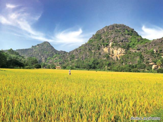 Eco-lodge Ninh Binh - Thành phố Ninh Bình - Flat