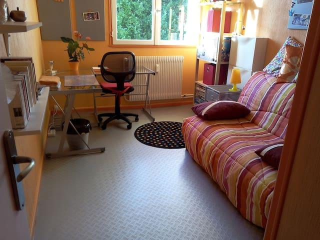 Chambre chez l'habitant à Saumur - Saumur - Huoneisto