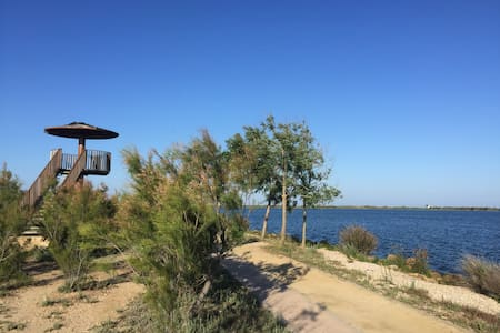 "BEAUTIFUL APARTMENT IN ""DELTA DEL EBRO"" - Deltebre"