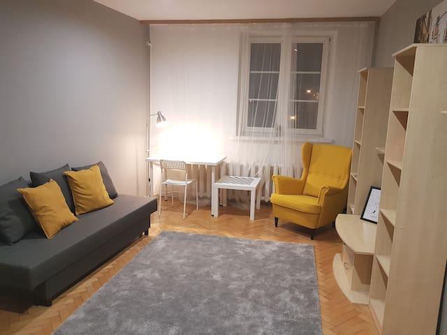 Apartament w sercu Lublina z widokiem na Zamek!
