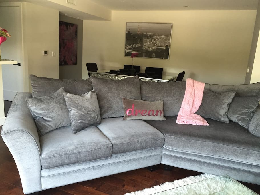 Large sectional couch, can sleep one extra person.