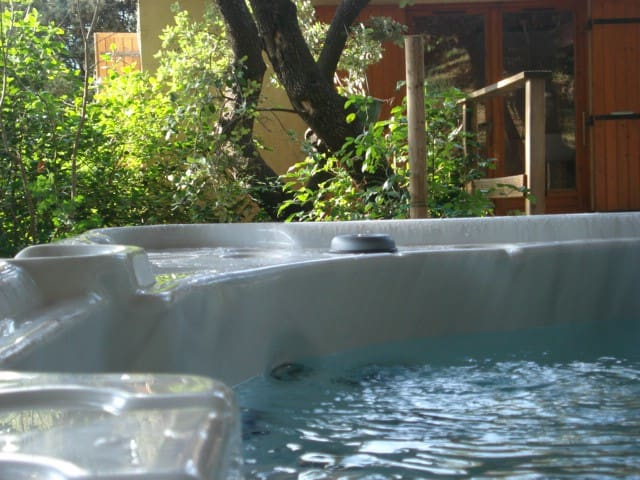 Cabin garden and spa en Provence - Saze - House