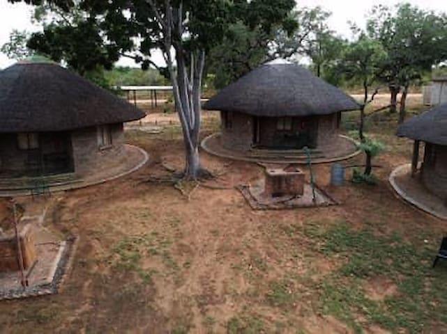Pumba Tours and Shonalonga Camp.