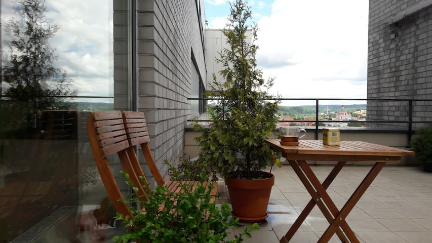 Spacious apartment, private terrace, amazing view! - Vilnius