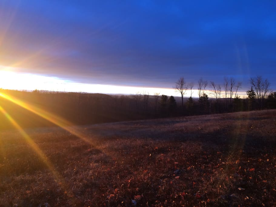morning view from the field. looking south.