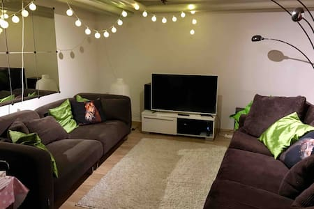 Comfortable basement floor (57kvm) near university