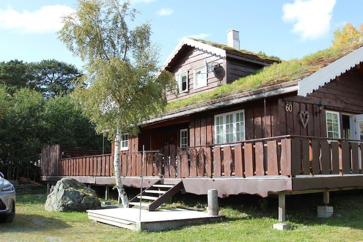 Familievennlig romslig hytte ved Stølen skisenter