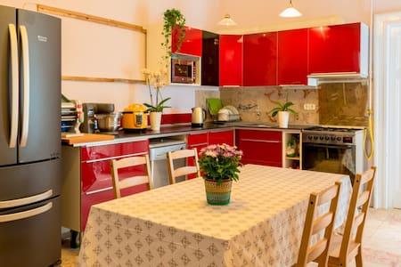 布达佩斯华人高阿姨家庭旅馆 - Budapest - Bed & Breakfast