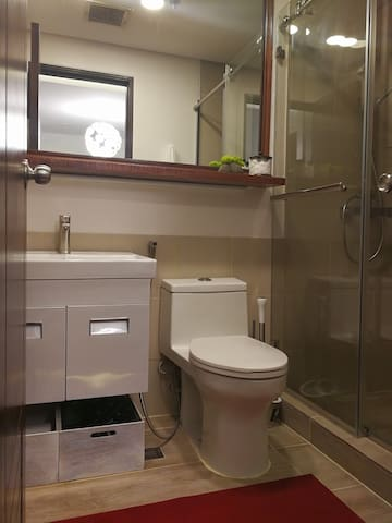 Toilet with Bidet.                Extra toiletries located underneath the sink.