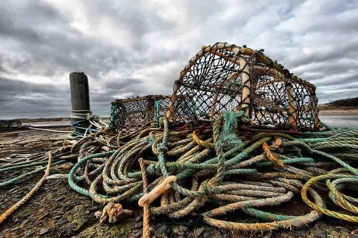 Hummerfiske på västkusten, Båtplats 4-5m ingår