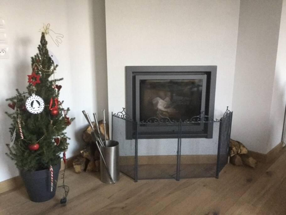 Cheminée / fireplace