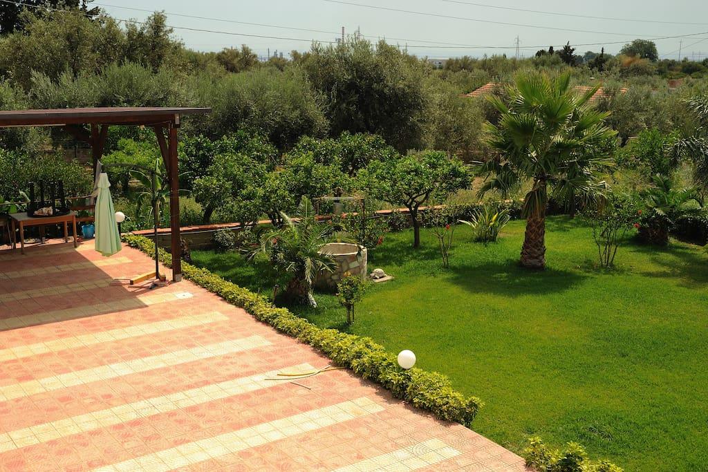 Beautiful Villa \