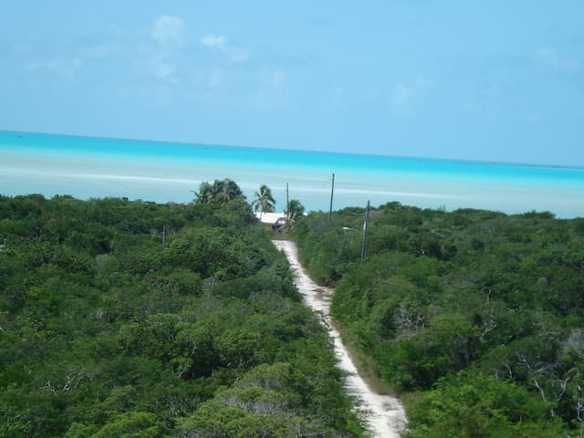EXUMA HUMMINGBIRD...PARADISE/close to beaches&town