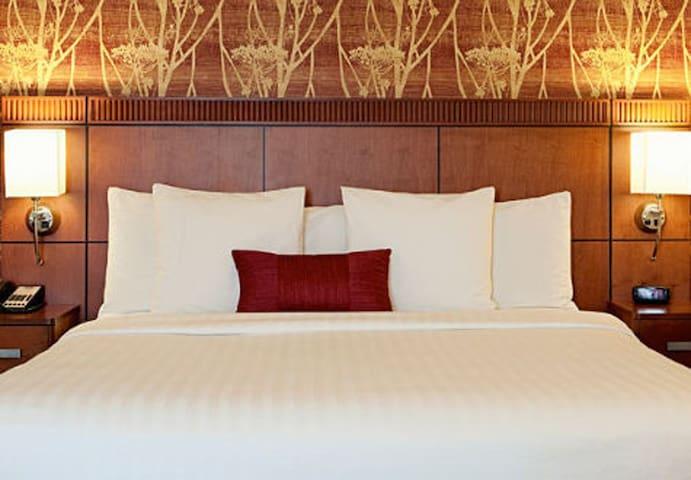 SXSW 2 Bedroom Apartment Share - Austin - Apartment