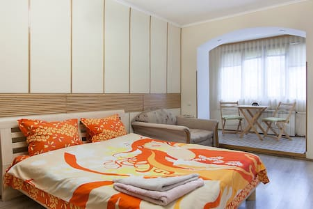 1 studio Vladimirskaja str/ Kiev ,little& nice - Kiev - Appartement