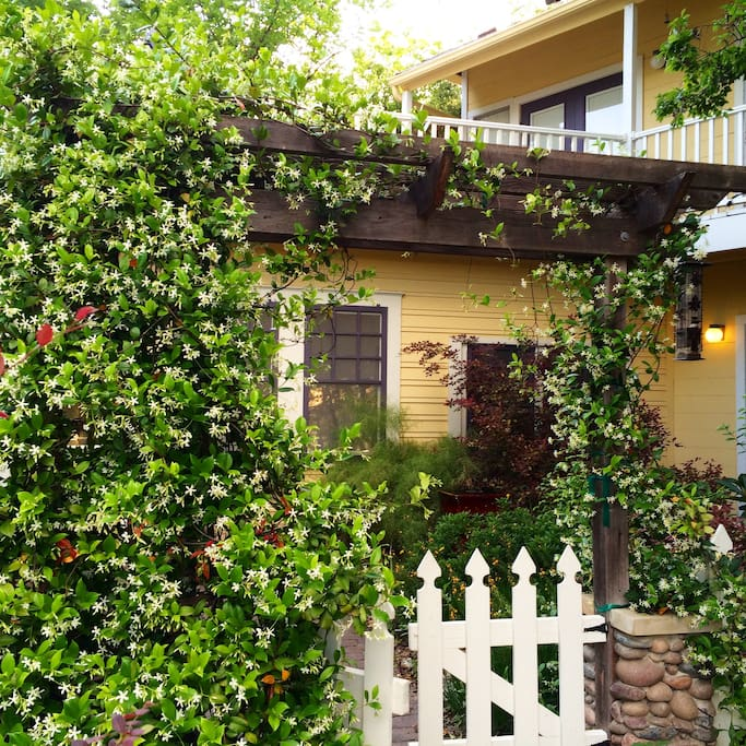 Charming Apartment B Walk To Ut Apartments For Rent In Austin Texas United States