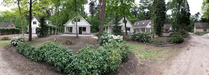 Vakantiehuis op rustig bospark Veluwe (Lunteren) 4