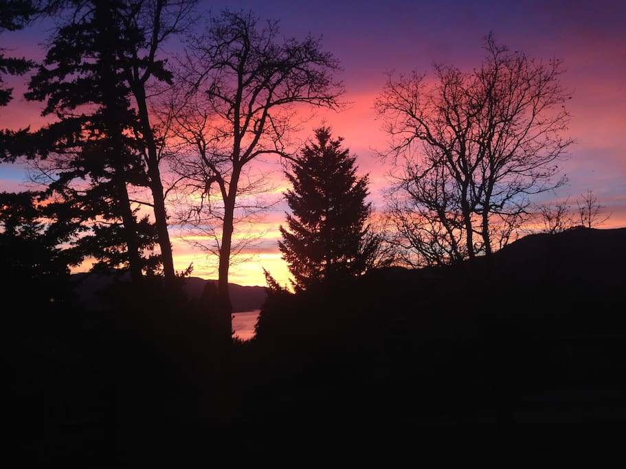 Spectacular sunsets. (Disclaimer - this is taken from deck above your patio - but close. :)