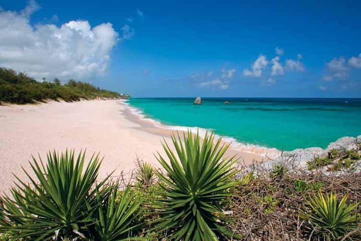 Private studio 8min walk to Bermuda's Best Beaches