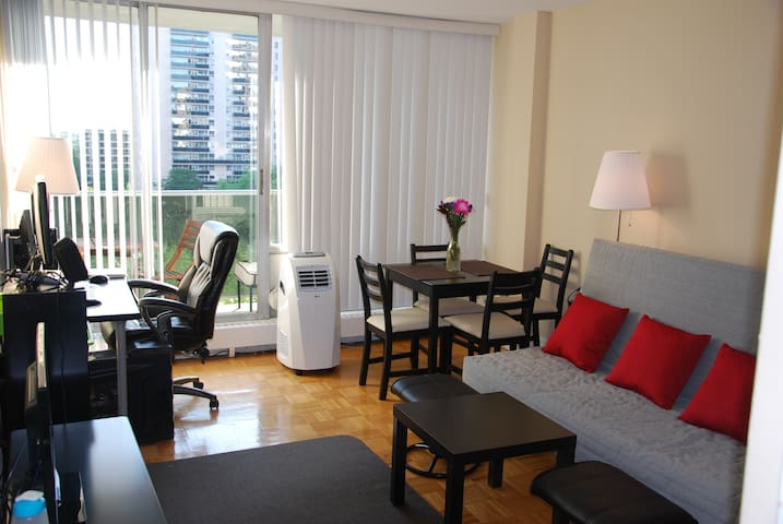 One Bedroom Apartment at Subway Ent