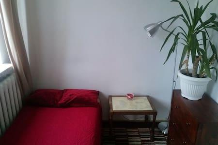 *Time travelling room (lgbt friendly) - Warszawa - Lakás