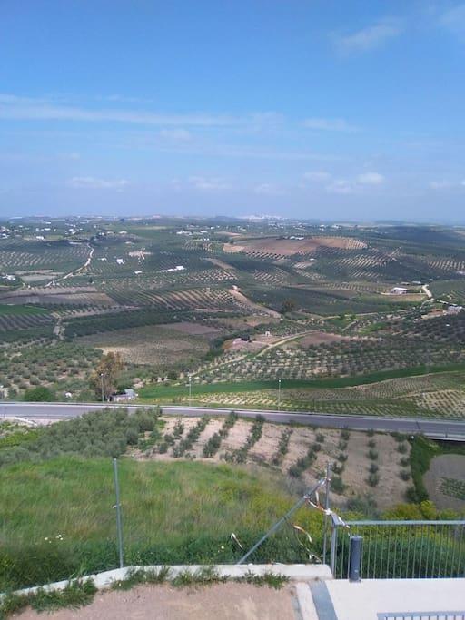 Vistas desde el Castillo de Montilla