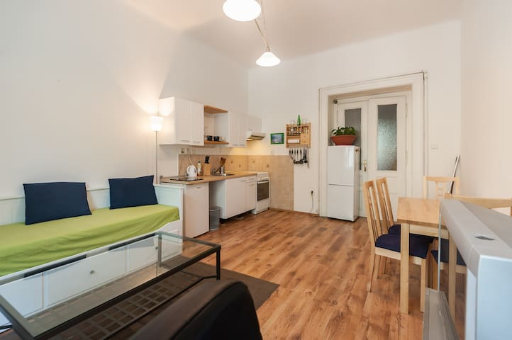 Cozy flat in the Heart of Prague