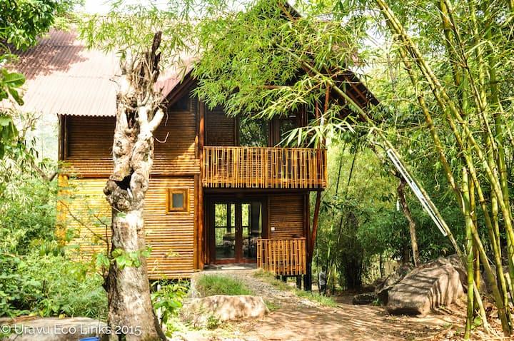 Eco Nest Cottage