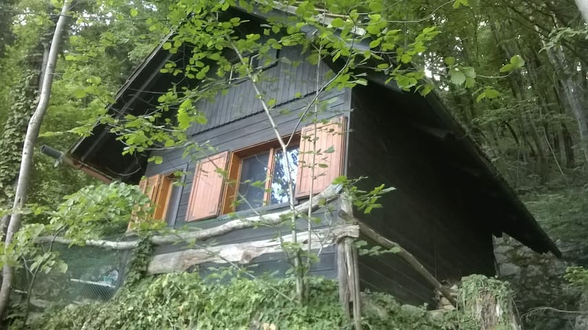 Frank's log cabin with amazing lake view - Bled - Stuga