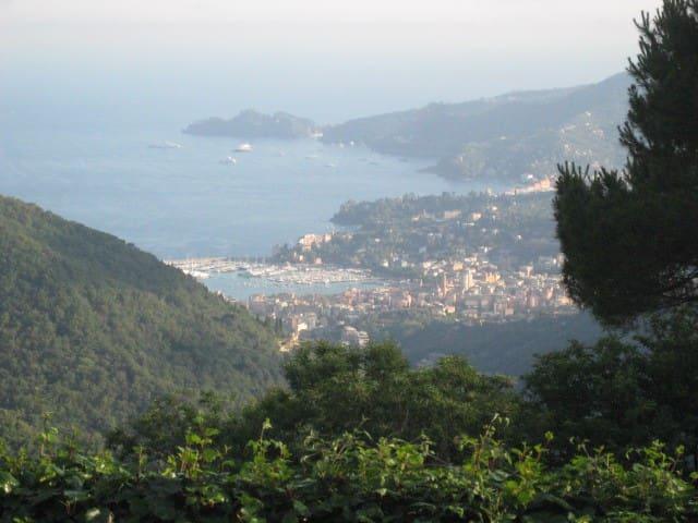 Residenza Paradiso - rapallo - House