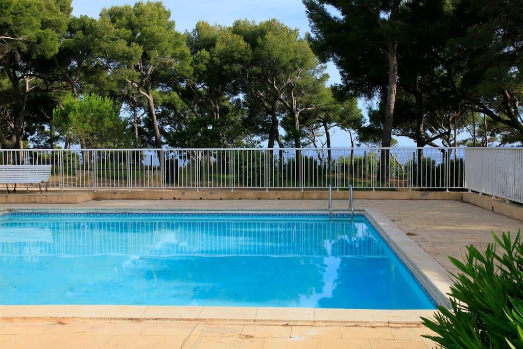 Bandol petit paradis en bord de mer appartements for Camping bandol avec piscine bord de mer