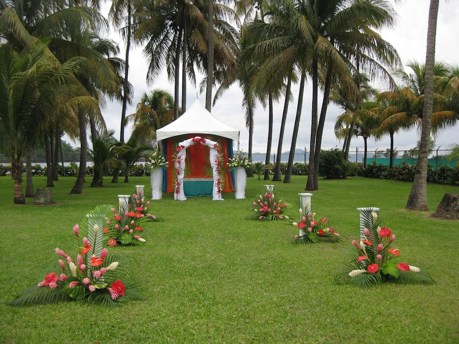garden decorated for wedding event