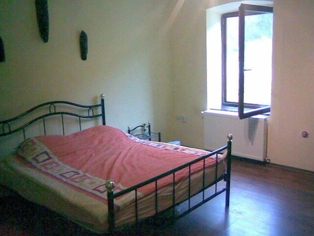 Nyaralo haz - Sasca Montană - House