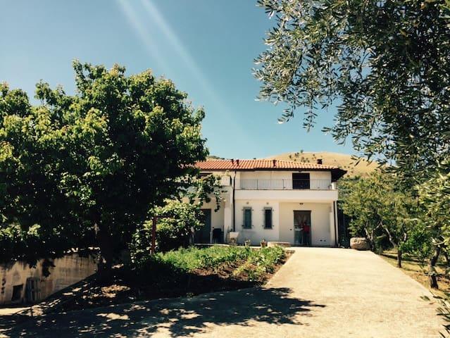 Tra ulivi e mare nel Gargano #3 - Cagnano Varano - Lägenhet