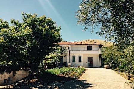 Tra ulivi e mare nel Gargano #3 - Cagnano Varano - Apartment
