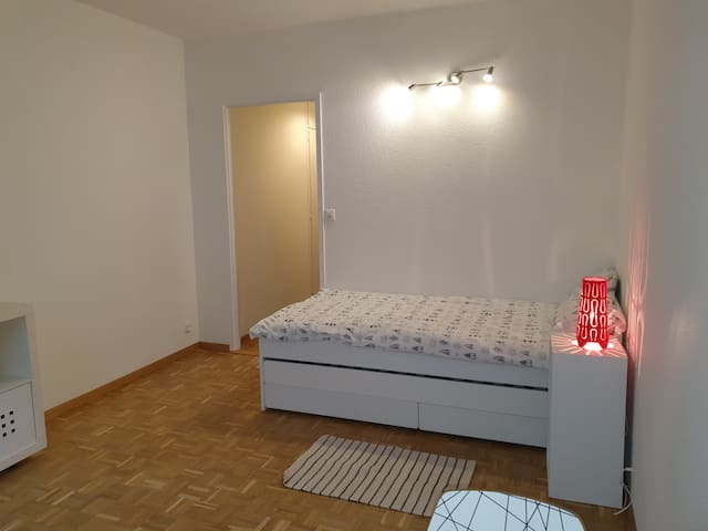 Genève appartement