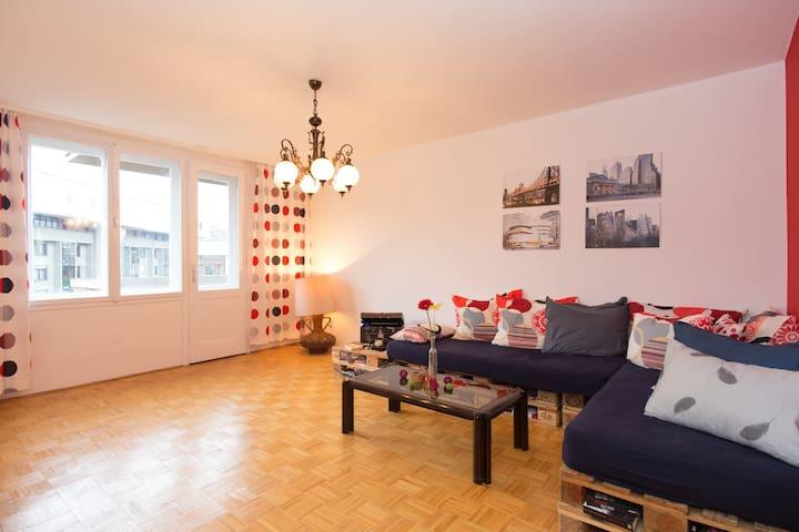 Modern spacious apartment in center