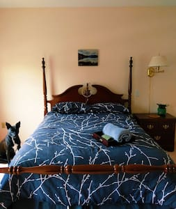 Quiet home with friendly dog 40 minutes from CLE