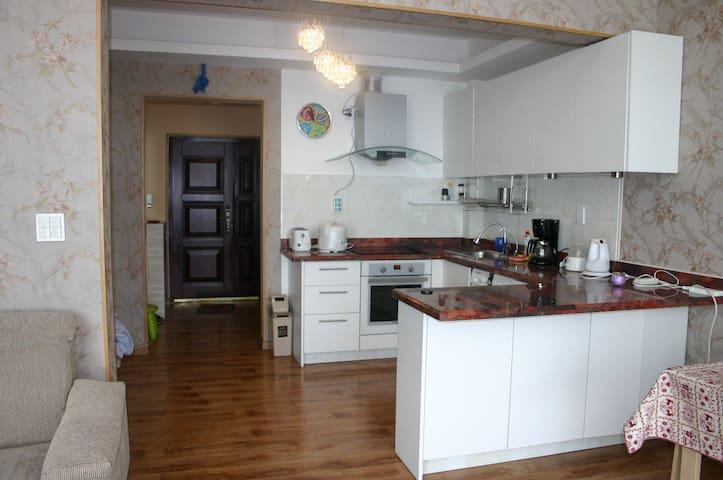 2 bedroom apartment near downtown - Улан-Батор - Квартира