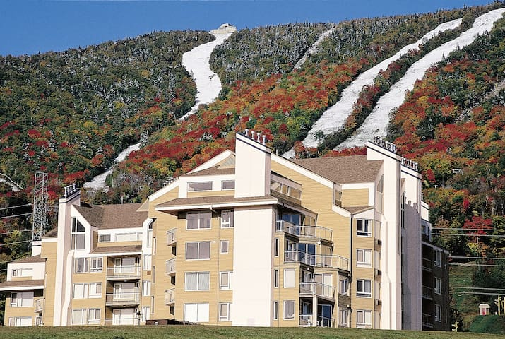 CONDO AT MONT-SAINTE-ANNE 3 rooms!MONTAIN VIEW! - Beaupré - Leilighet