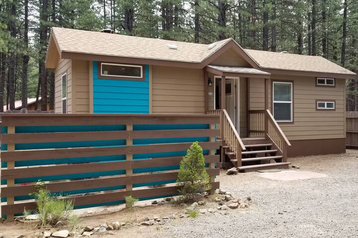 Tiny Home Cabin - Great for Family and Pets