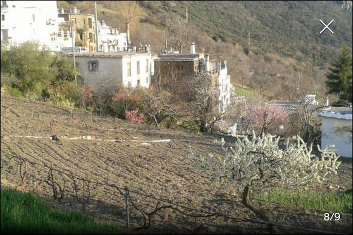 La Casa de la Abuela - Bubión - บ้าน