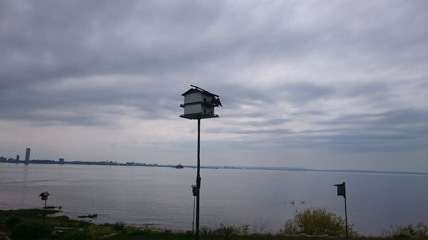 Lake Erie bird boxes keep the mosquitos away