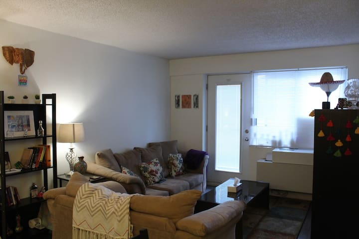 Downtown Cozy, Bright and Spacious 1 Bedroom